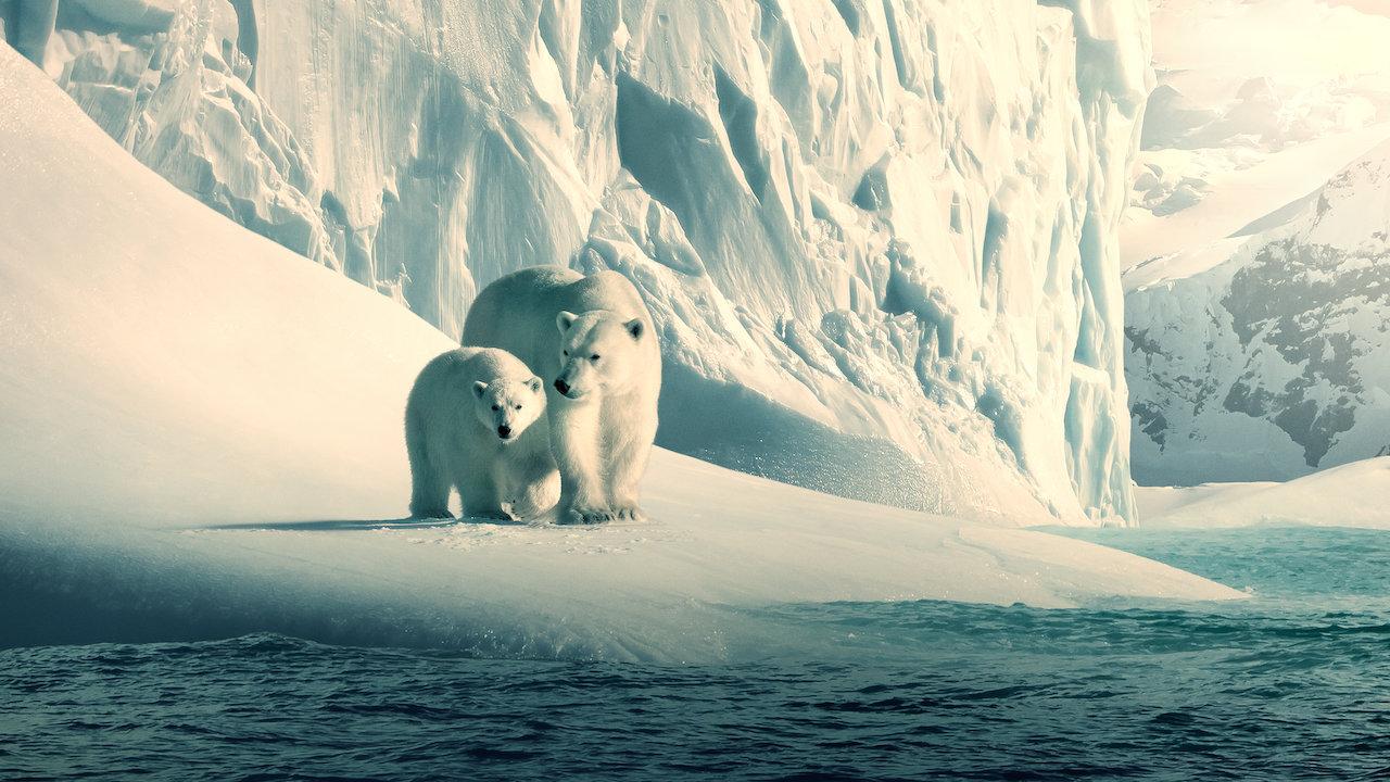 Reseña: Nuestro planeta (guía para padres)